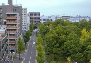 須崎公園前